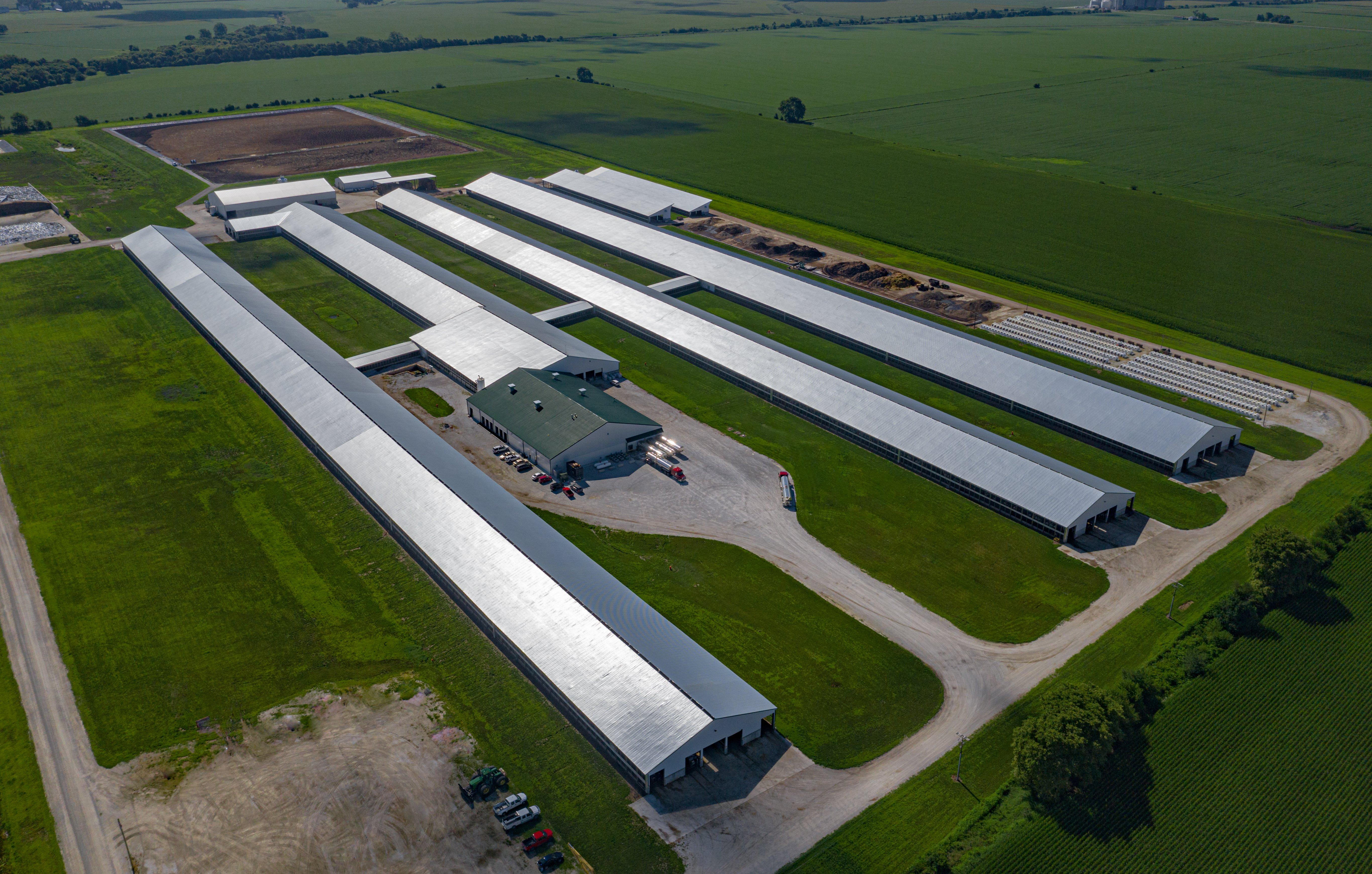 Freeland dairy (GWD)