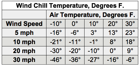 beef barns, cattle temperatures