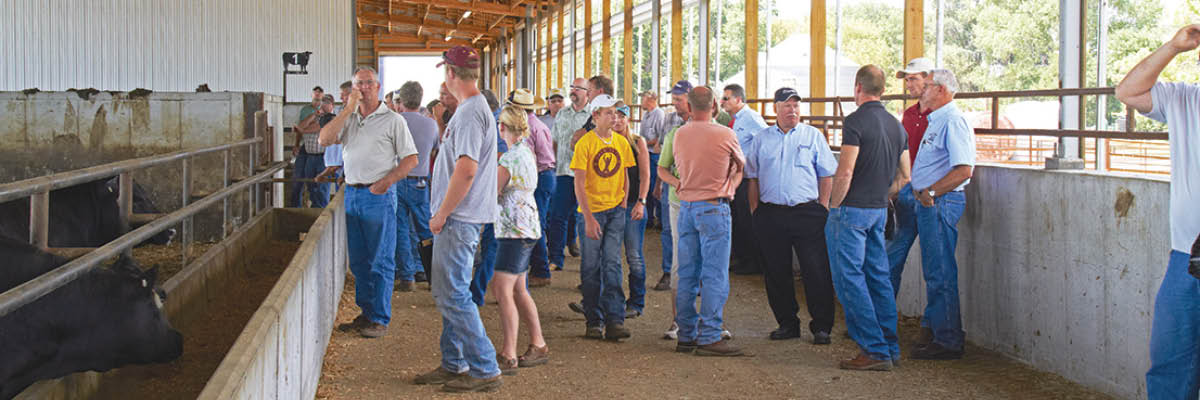 Beef Sales Team: Meeting The Needs of Animals and Owners