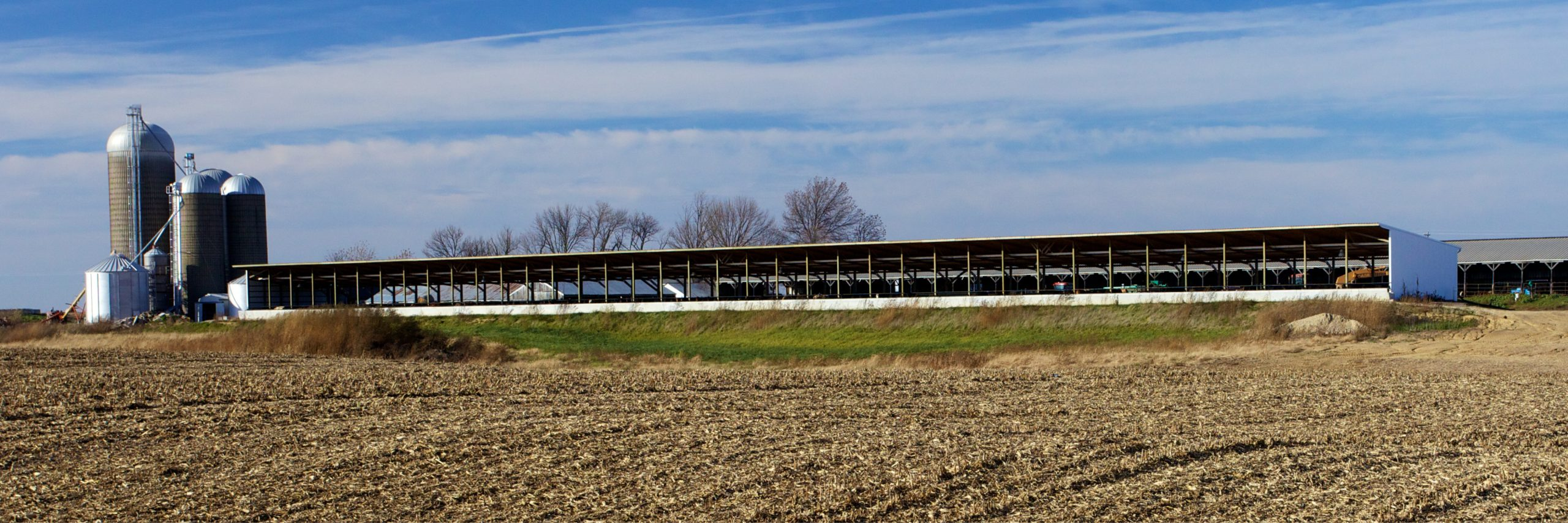 Irish farmers visit Illinois beef farm
