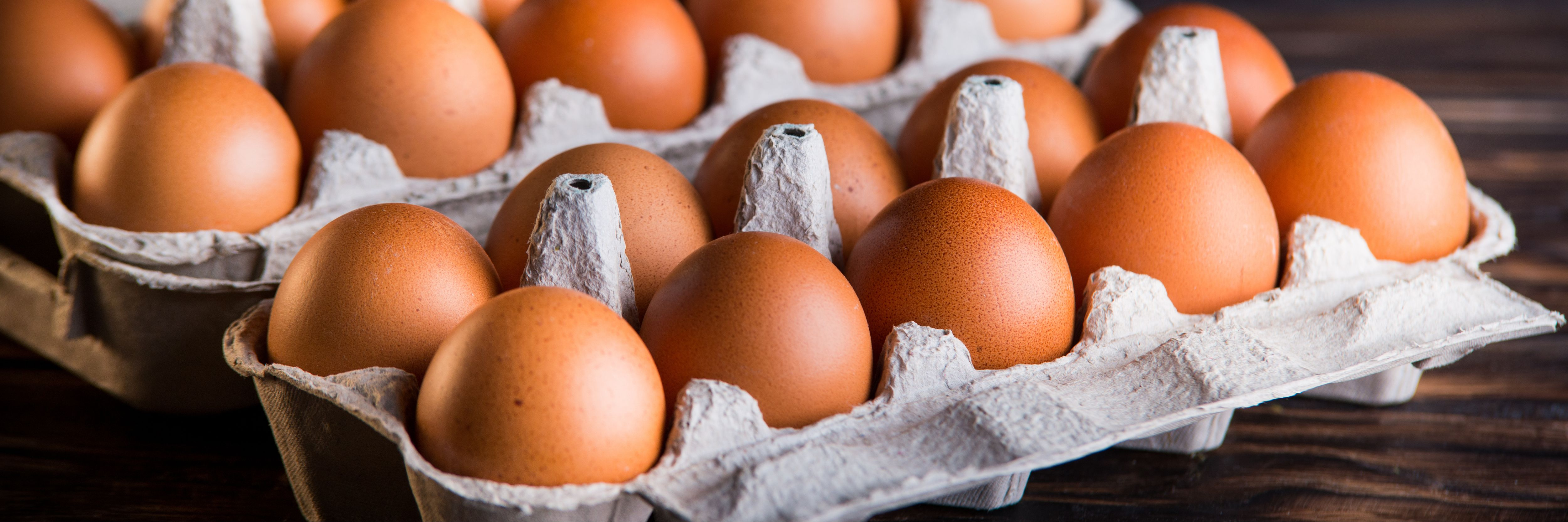 Consumer Demand for Eggs Grows Worldwide